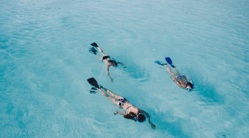 snorkle maldivas